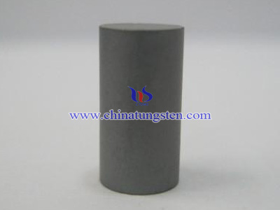 Tungsten Carbide Pins Picture